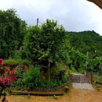 Agro Guest House Tsiskari in Machakhela, hotel in Khelvach'auri