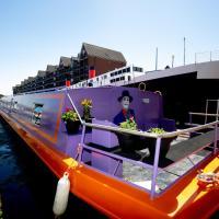 The Joker Boat