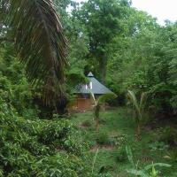 Alya Eco-Lodging & Yoga -- Casita 1