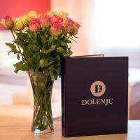 Hotel Dolenjc, hotel in Novo Mesto