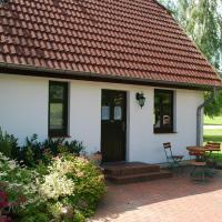 Beautiful Mansion in Dargun Mecklenburg with Swimming Pool
