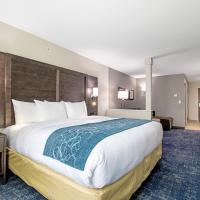 Comfort Suites Humble Houston at Beltway 8, hotel in Humble