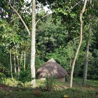 Bwindi Forest Farm and campsite