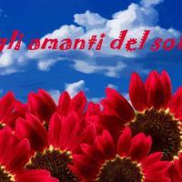 Gli Amanti del Sole Accomodations - ACCONIA-CZ, отель в городе Куринга