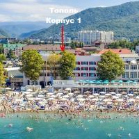 Отель Тополь