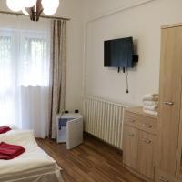 Borostyán Panzió, hotel in Répáshuta