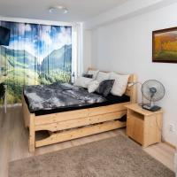 Great flat near center with view on Mountains