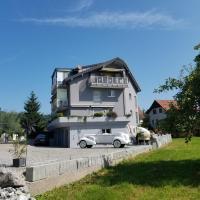 Studio direkt am Bodensee, hotel near St. Gallen-Altenrhein Airport - ACH, Thal