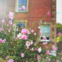 Bridport Garden Suite