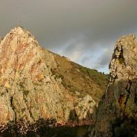 Bungalows Camping Parque Nacional de Monfragüe, hotel en Malpartida de Plasencia