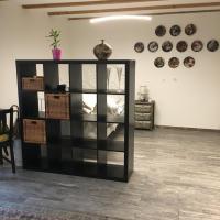 Studio 50 m2 avec accès terasse, hotel in La Neuveville