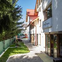 Pensiunea Aria Paltinis, hotel din Păltiniş