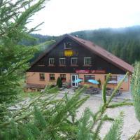 Auberge Des Hauts Viaux, hotel in La Bresse