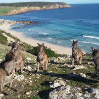 Waves & Wildlife Cottages Kangaroo Island, hotel em Stokes Bay