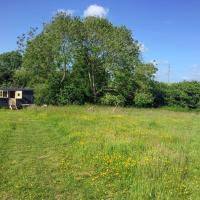 Berewood Hut
