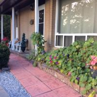 Private property with guest rooms, hotel near Toronto Pearson International Airport - YYZ, Brampton