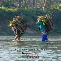 Hotel Chitwan Park Village, hotel in Sauraha
