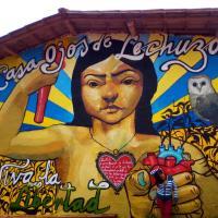 Casa Ojos de Lechuza