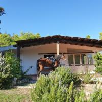 Villa Badde rosa