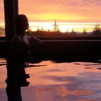 360 Hotel & Thermal Baths, hótel á Selfossi