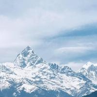 Annapurna Homestay