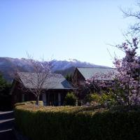 Forest Peak Motel, hotel in Hanmer Springs