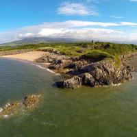 The maple at Port Haverigg