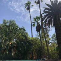 Le Jardin De La Koudya