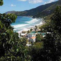 Purple Pineapple Guest Houses - Overlooking Apple Bay, Tortola BVI, hotel in Great Carrot Bay