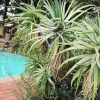 Rocky Ridge Guest House SELF Catering - No alcohol allowed