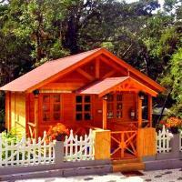 Rainforest Munnar