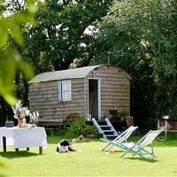 Mollies Hut, hotel in Frome