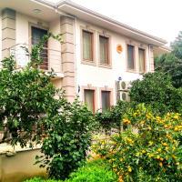Turgutköy Apart, hotel in Turgut