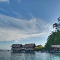 Five Rock Raja Ampat
