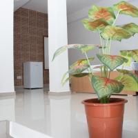 Plateau Bedroom & Chambre - Praia Center