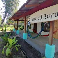 Casa turtle Bogue