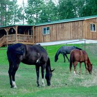 'Townsend Ranch Bunkhouse' on Working Ranch!, hotel in Darby