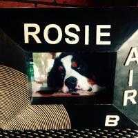 Rosie AirB, hotel em Hébertville