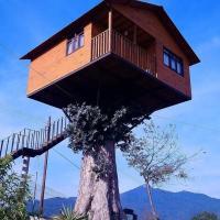 Cabaña en el árbol Trini