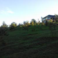 The Crested Crane Bwindi Hotel, hotel in Rugando