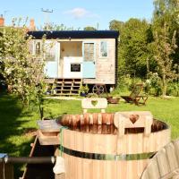 Cosy Shepherd's Hut