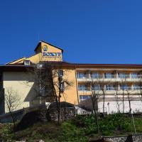 Hotel Bojur, hotel in Mineralni Bani