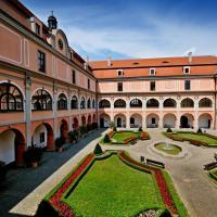 Zámecký Penzion, hotel in Valašské Meziříčí