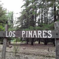 Los Pinares