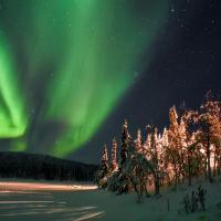 Arctic Paradise, hotel in Koskullskulle
