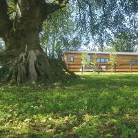 Beech Tree Lodge
