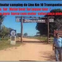 ocelotnatur Pantanal camping do Lino