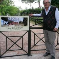 Vigna dell'Agrifoglio - Bed and Breakfast, hotell i Velletri