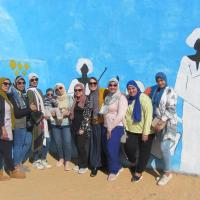 shams guest house, hotel near Aswan International Airport - ASW, Aswan
