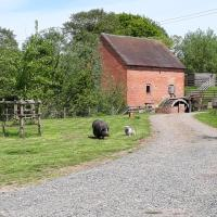 Rockhill Mill